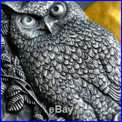2019 Niue 2 Ounce Asio Otus Long Eared Owl High Relief Silver Coin Set
