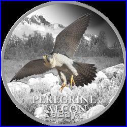 BIRDS OF PREY 4 Coin Set Osprey, Bald Eagle, Great Horn Owl, Peregrine Falcon