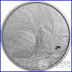 CAT Artistic Real Eye Effect 2 Oz Silver Coin 10$ Niue 2016